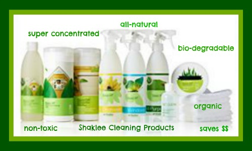 Image result for home shaklee